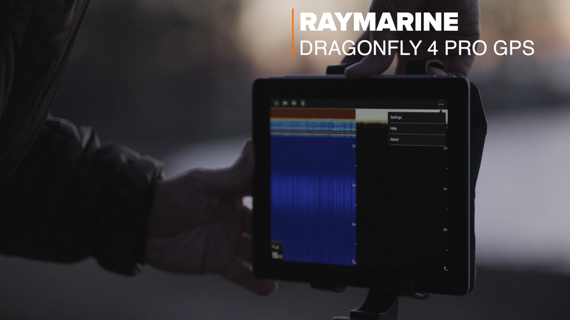 RayMarineDF4Pro